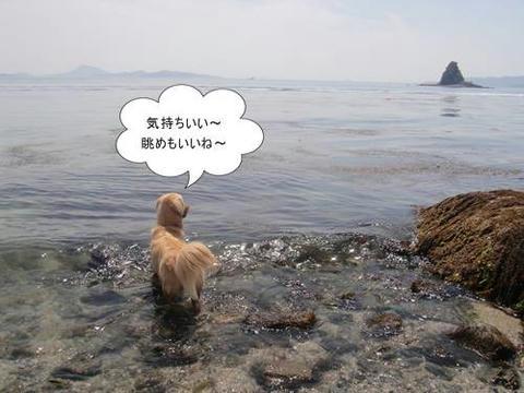 run20110519-7.JPG