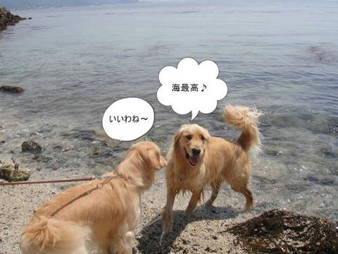 run20110519-8.JPG