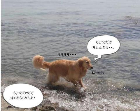 run20110519-11.JPG