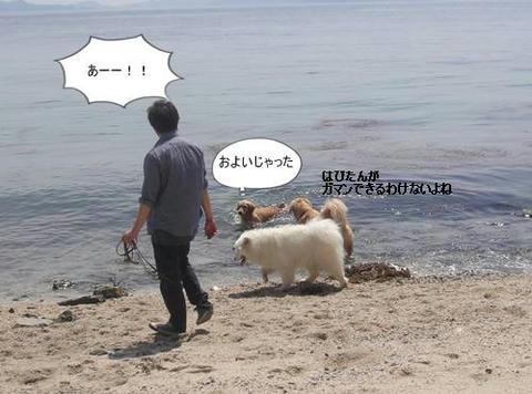 run20110519-12.JPG