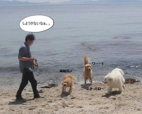 run20110519-13.JPG