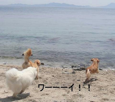 run20110519-14.JPG