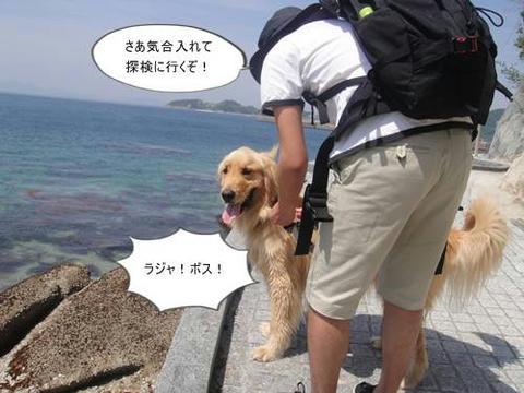 run20110520-1.JPG