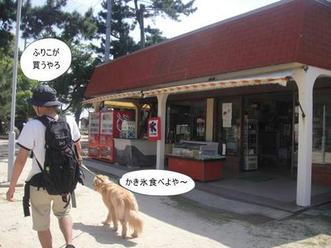 run20110520-10.JPG