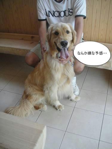 run20110521-1.JPG