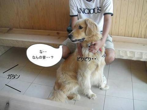 run20110521-2.JPG