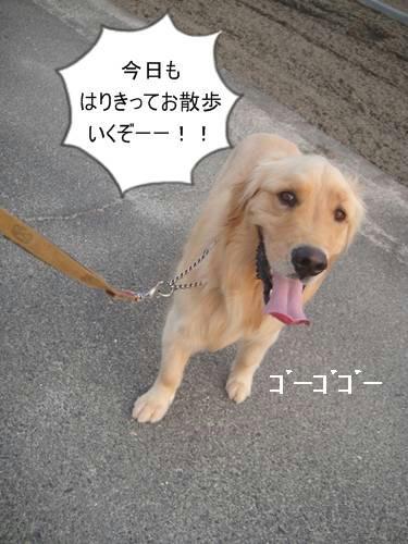 run20110602-2.JPG