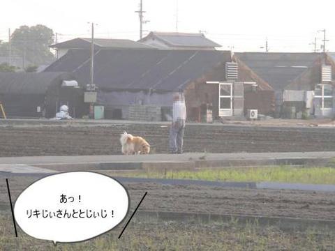 run20110603-1.JPG