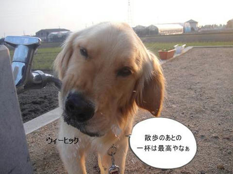 run20110603-6.JPG