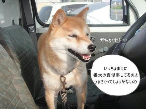 run20110604-3.JPG