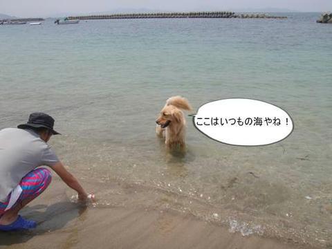 run20110605-1.JPG