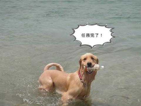 run20110605-8.JPG