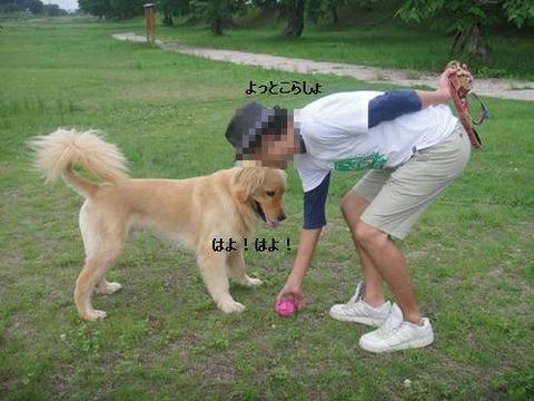 run20110628-3.JPG