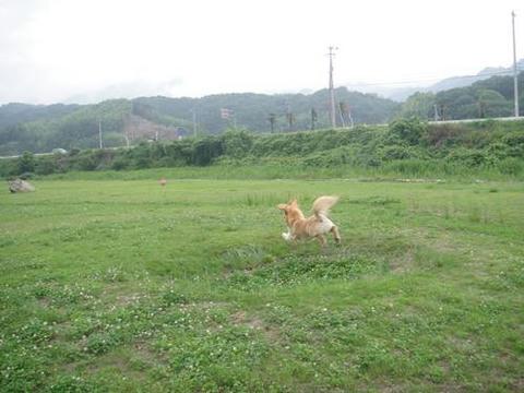 run20110630-2.JPG