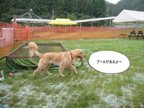 run20110703-3.JPG