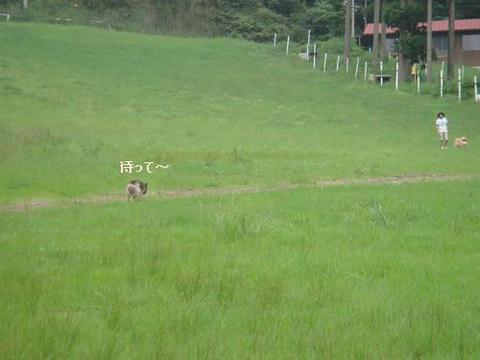 run20110704-6.JPG