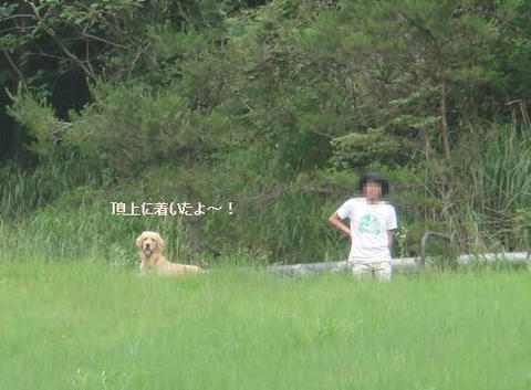 run20110704-8.JPG