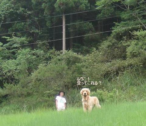 run20110704-9.JPG