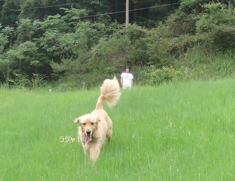 run20110704-10.JPG