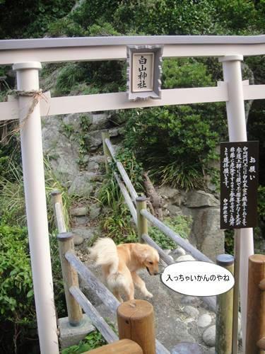 run20110727-6.JPG