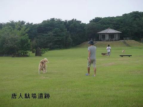 run20110728-14.JPG