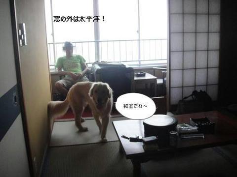 run20110728-1.JPG