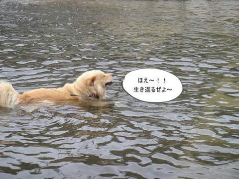 run20110806-2.JPG