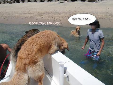 run20110820-5.JPG