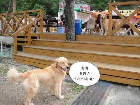 run20110910-2.JPG