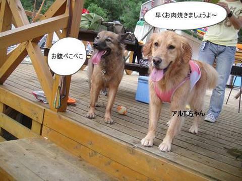 run20110910-5.JPG