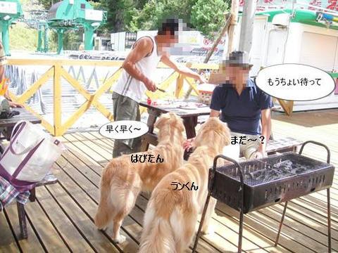 run20110910-7.JPG