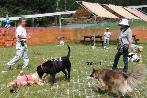 run20110910-10.JPG