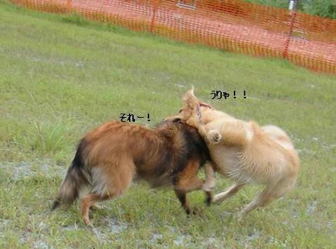 run20110910-13.JPG