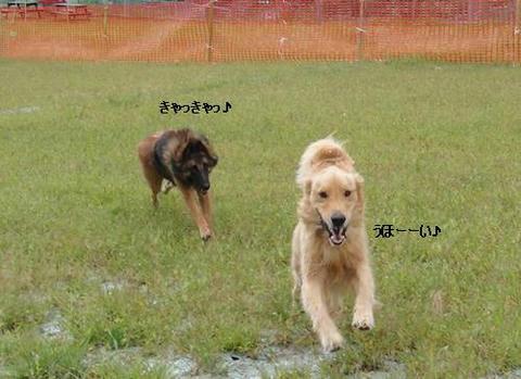 run20110910-14.JPG