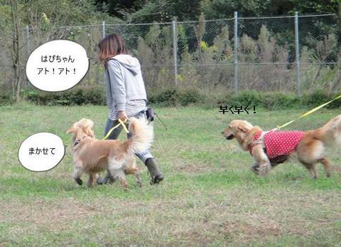 run20111016-7.JPG