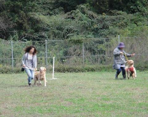 run20111016-10.JPG