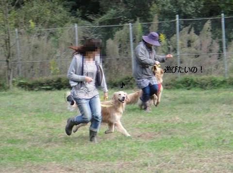 run20111016-11.JPG