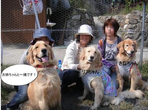 run20111016-12.JPG