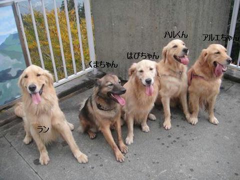run20111020-22.JPG