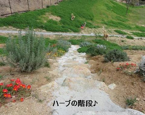 run20111102-7.JPG