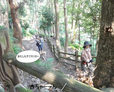 run20111117-5.JPG