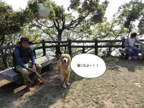 run20111117-8.JPG