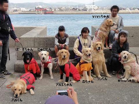 run20111117-15.JPG