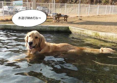 run20111231-1.JPG