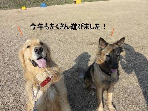 run20111231-2.JPG