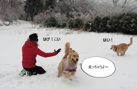run20120103-5.JPG
