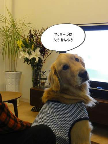 run20120120-2.JPG