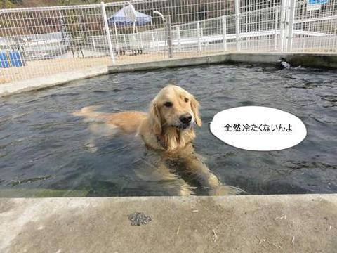 run20120130-4.JPG