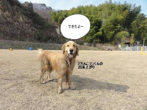 run20120130-9.JPG
