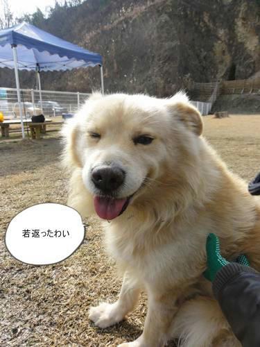 run20120130-10.JPG